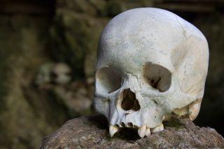 Tana Toraja: il culto dei morti e le case Tongkonan